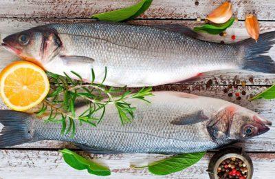 регулярное употребление рыбы